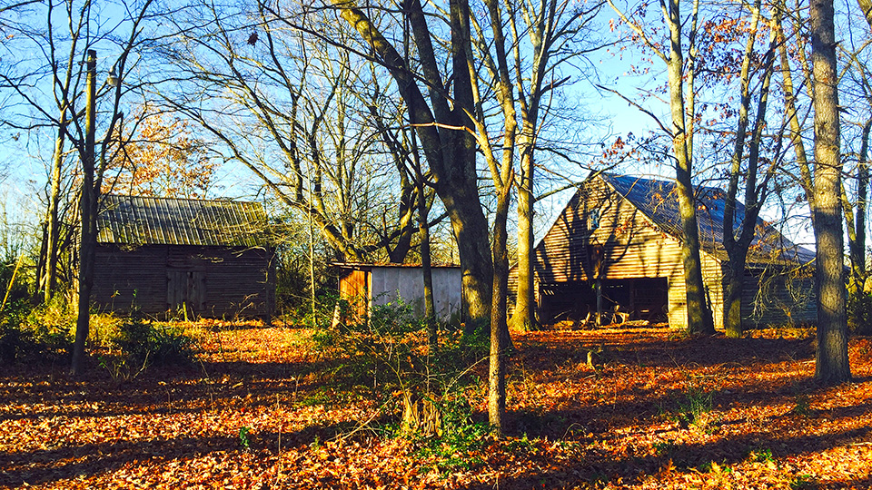 McConnell House outbuildings
