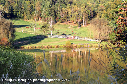Claxton Farm, Weaverville, Buncombe County, NC.