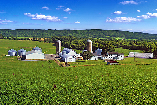 Farmstead, Franklin Township, Warren County, NJ