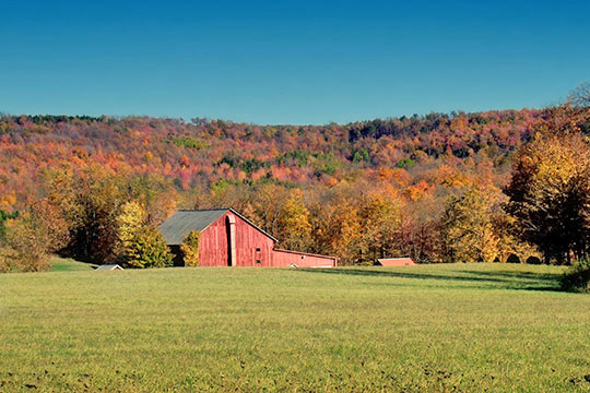 Farmstead in Cherry Township, Sullivan County, PA