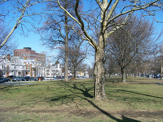 Walnut_Park_Historic_District Photo