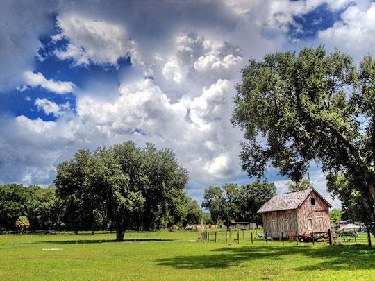 Pasco County Photo